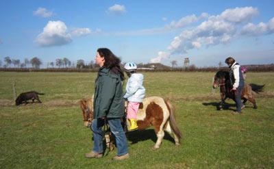 reiten pony